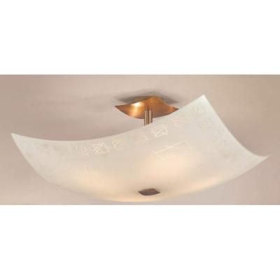 Потолочный светильник Citilux Дина CL937305