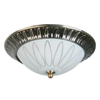 Накладной светильник Toplight Paulina TL5050Y-02AB