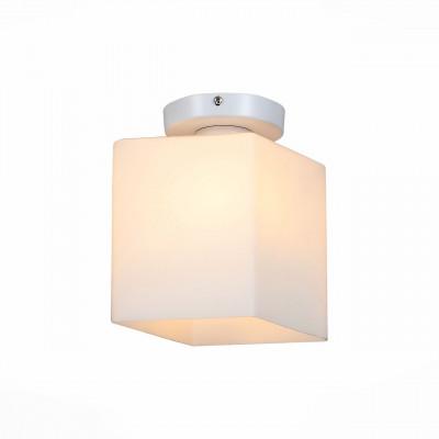 Настенно-потолочный светильник ST Luce Aspetto SL548.501.01