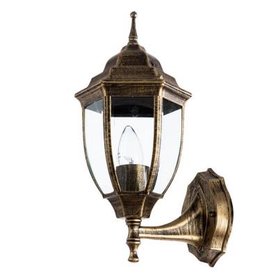 Уличный настенный светильник Arte Lamp Pegasus A3151AL-1BN
