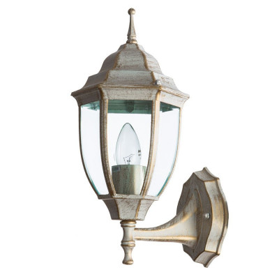 Уличный настенный светильник Arte Lamp Pegasus A3151AL-1WG